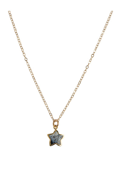 Star Dendritic Opal Gold Necklace