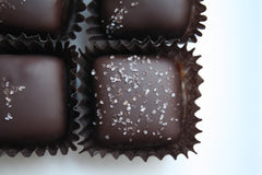 nicobella organic fair trade dark chocolate peanut butter squares