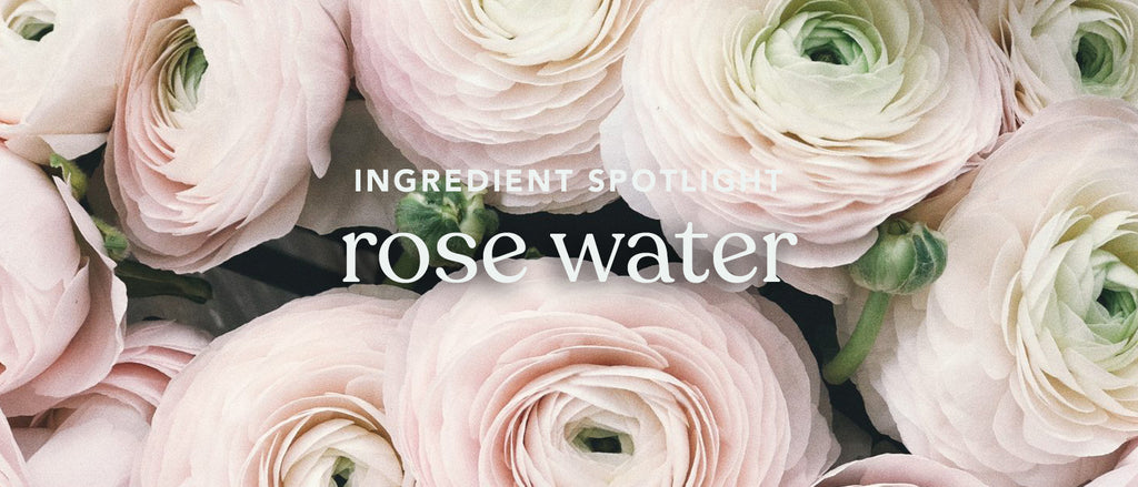 Ingredient Spotlight: Rose Water