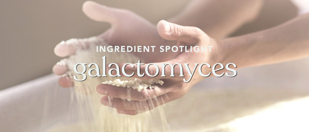 #brightenUP – What is Galactomyces?