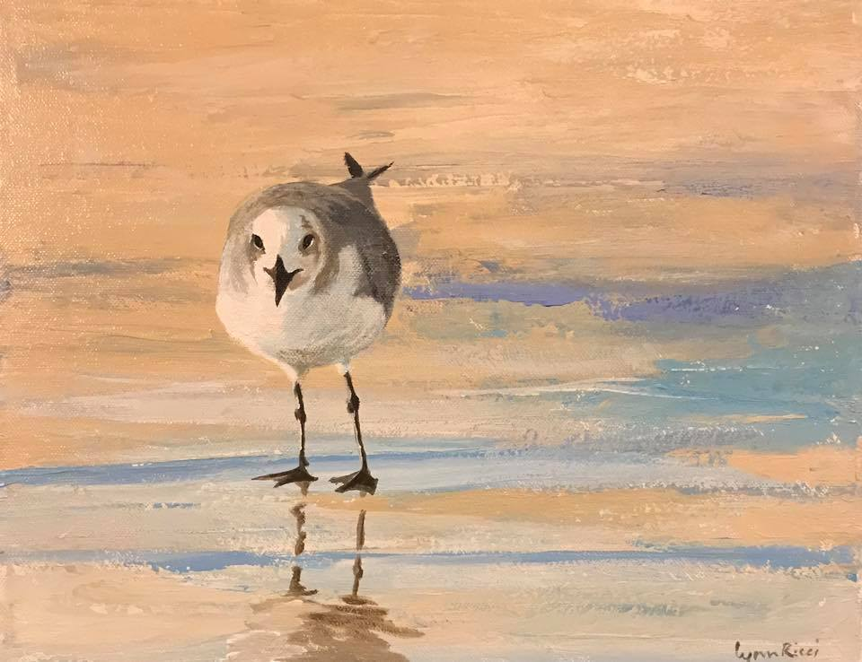 Staring Gull - Artwork of Lynn Ricci