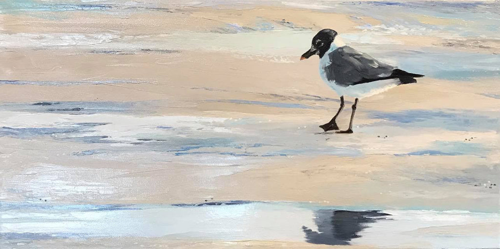 Laughing Gull on Sandy Neck - Artwork of Lynn Ricci