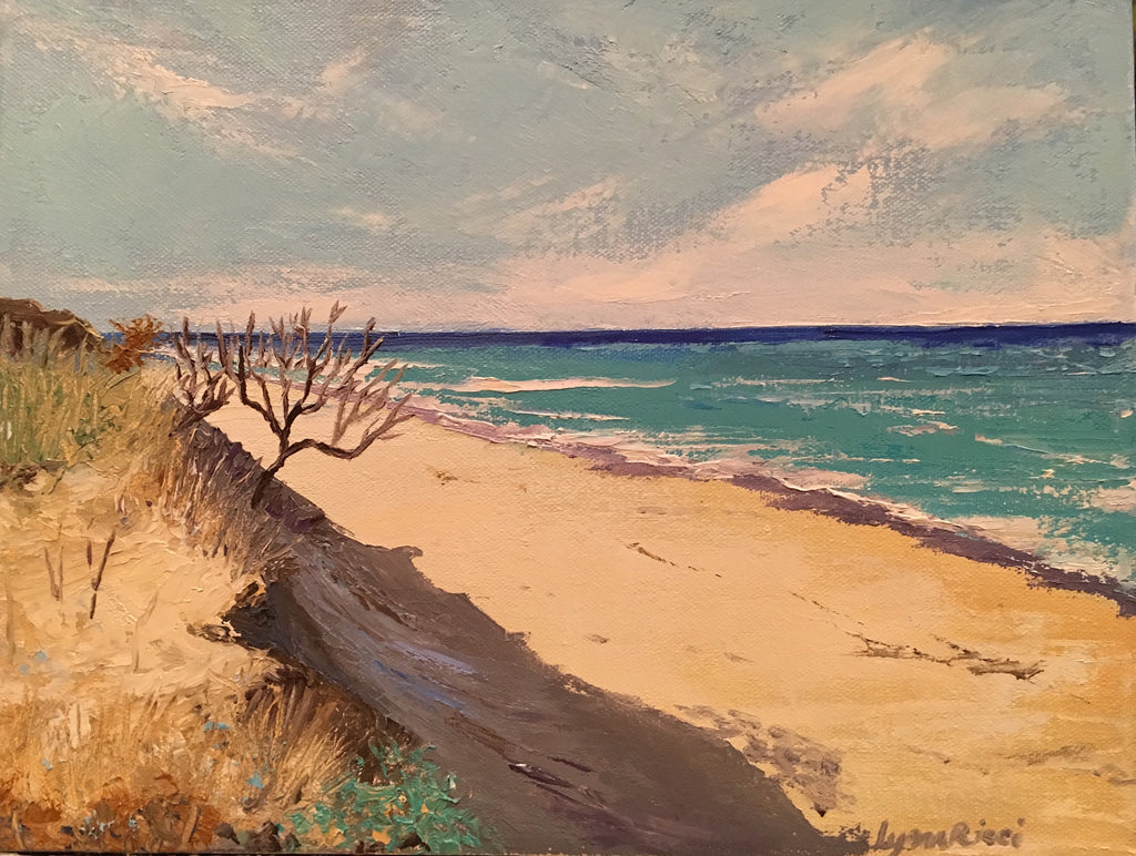 Marconi Beach, Wellfleet - Artwork of Lynn Ricci