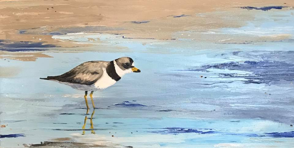 Plover Stalking Mud Flats - Artwork of Lynn Ricci