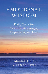 Book: Emotional Wisdom