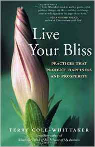 Book: Live Your Bliss.  Produce Happiness and Prosperity
