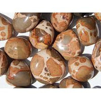 Stone: Leopardite Tumbled. Conflict, Insecurity, Loss of Control