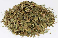 Witch Hazel Herb