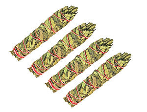 Yerba Santa Sticks (3 pack)