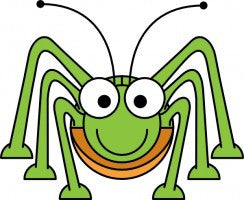 Spider Bye-Bye: Natural Pest Protection Spray (Spider and Ants)