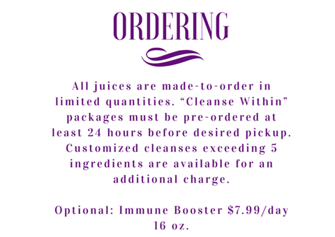 jungle juice bar, 1 day cleanse, grosse pointe