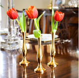 Brass Bud Vase with Tulips