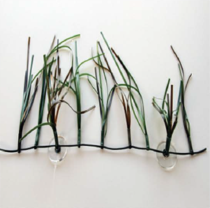 Shoal Grass (SPECIAL ORDER - 4-6 WEEK LEAD TIME ON THIS ITEM)