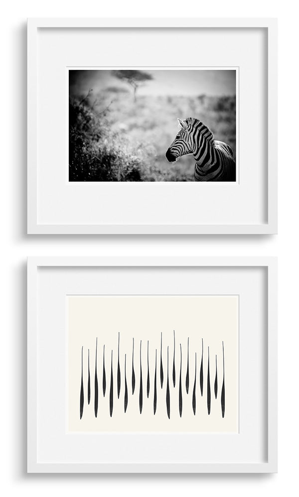Black and white photo and a strong graphic print.
