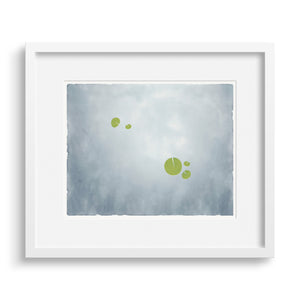 "White-framed version of ""Apart"", an image of water lilies. Limited Edition Archival Print."