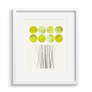A limited edition fine art print based on a glorious bunch of Daffodils.