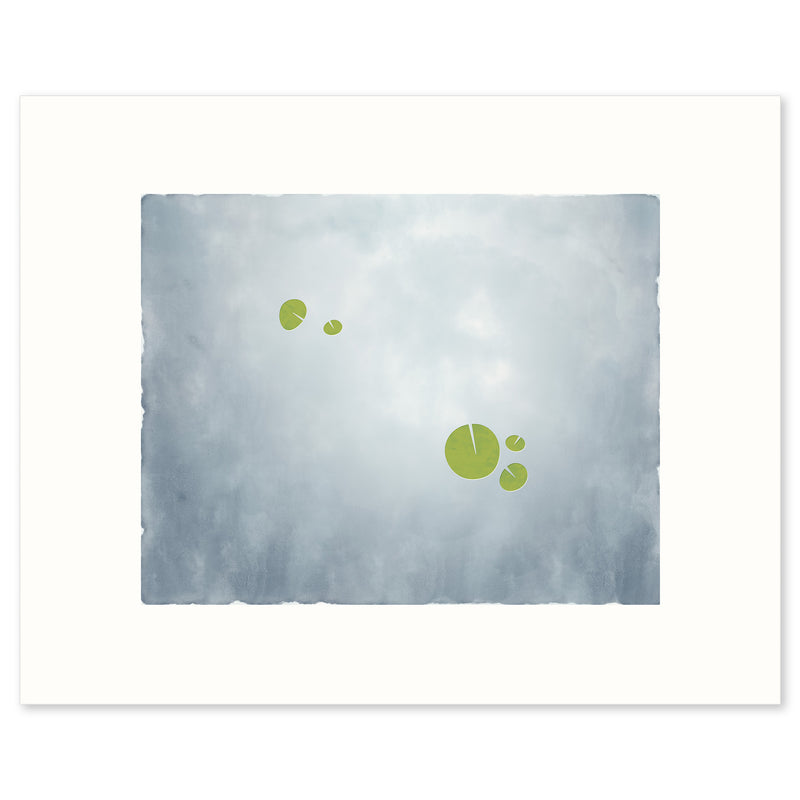 "Fine Art Print ""Apart"", an image of water lilies. Limited Edition Archival Print, by Janet Taylor 