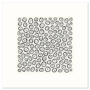 Coral Graphic Fine Art Print