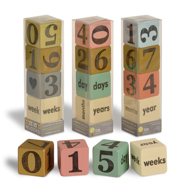 Baby Age Blocks-Set of 4