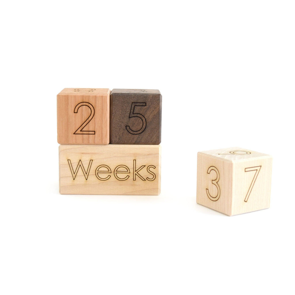 Little Sapling Toys - Age Blocks Photography Prop