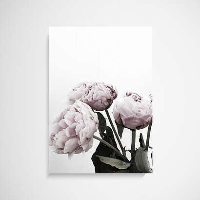 The Stables Peonies Wall Art Print
