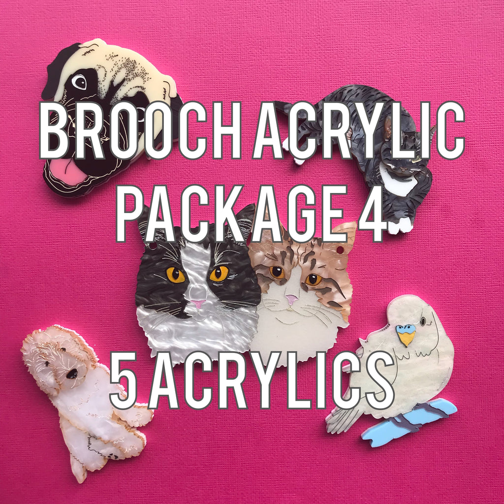 Brooch Acrylic Package 4 - 5 acrylics: 1 back and 4 top acrylic colour
