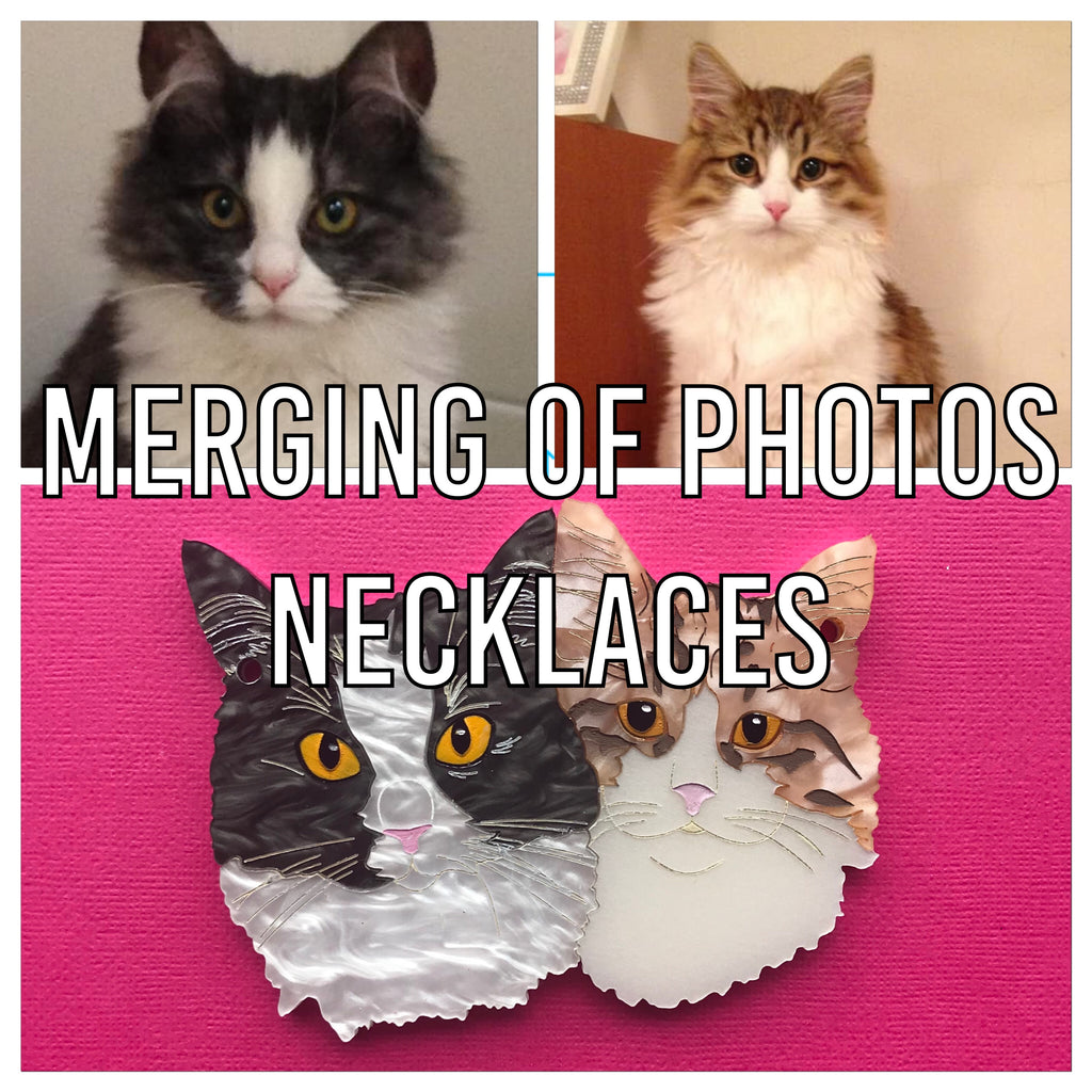 Vectoring Add on: Merge of two images (necklace)