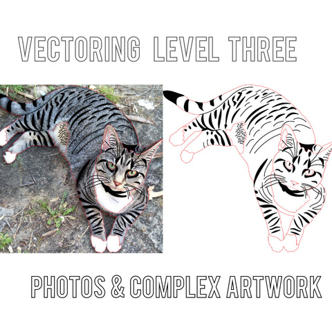 Vectoring Level 3 – Complex artworks and photos
