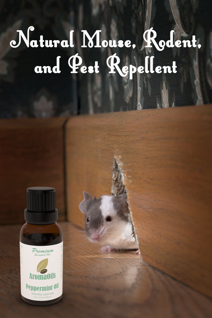 Peppermint Essential Oil by AromaOils - 1 oz (30 ml) - Best for Mice and Pest Repellent, Aromatherapy, Headache Relief - Fresh Menthol and Mint Scent