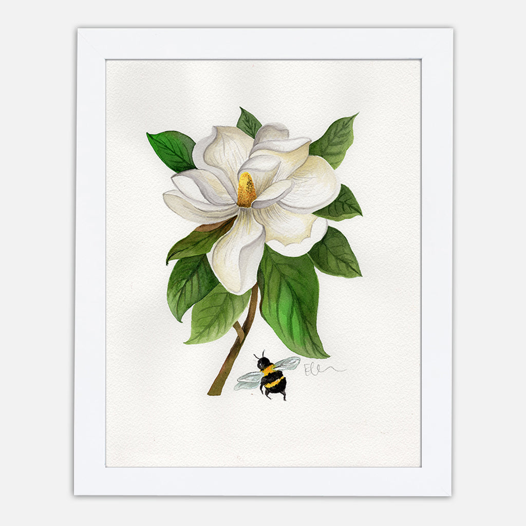 Louisiana Magnolia Art Print