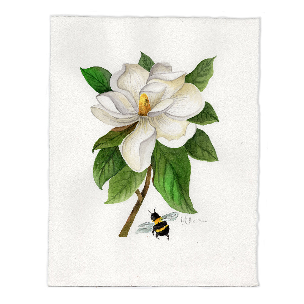 Louisiana Magnolia Original