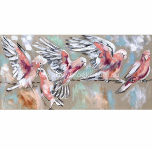 Blush Galah - Art Print Art