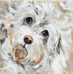 Pet Portrait - Tilly 50X50 Cm
