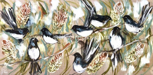 Willy Wagtail Blessings Art Print