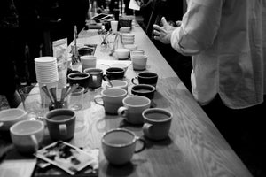 Cupping session with Toshiyuki Ishiwata / Market Lane Coffee - Photo Report