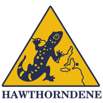 Hawthorndene Primary School