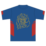 Fitzroy Lions FC (P&S) | Training Tee