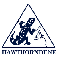 Hawthorndene PS | Iron-On Logo