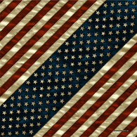 BANDANA AMERICAN FLAG DISTRESS