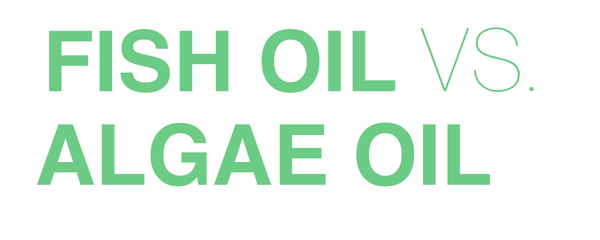 FISH OIL VS ALGAE OIL