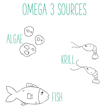 sources of omega 3