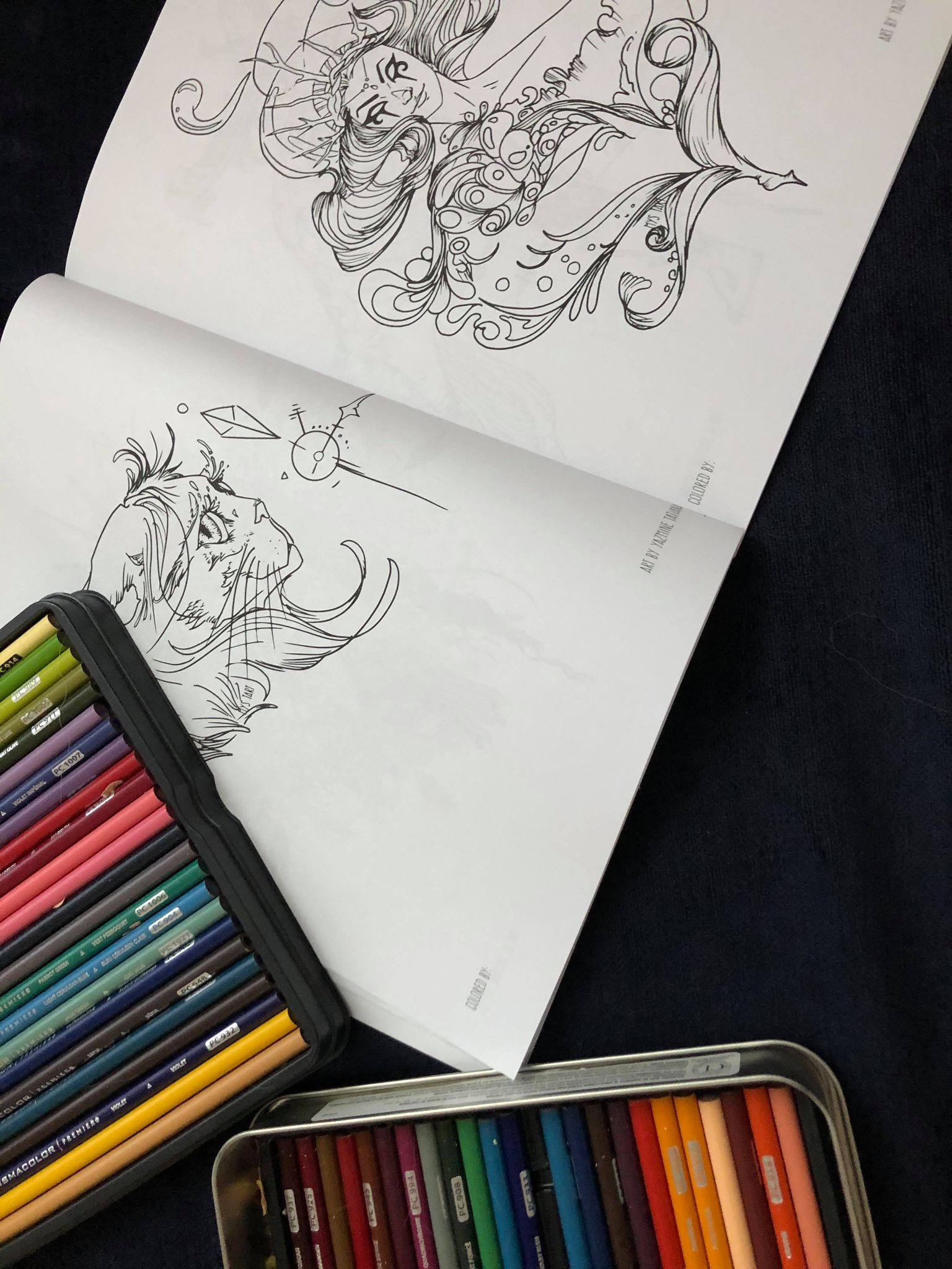 Surreal Fantasy (Coloring Book)