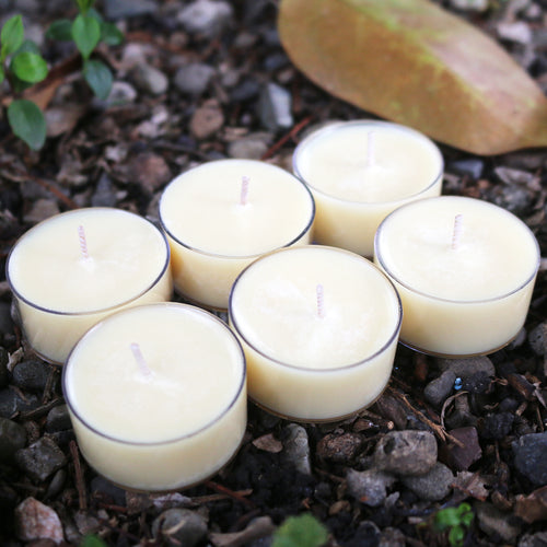 Mythos Candles | Faerie - Honeysuckle & Jasmine | 6 Soy Tealight Pack