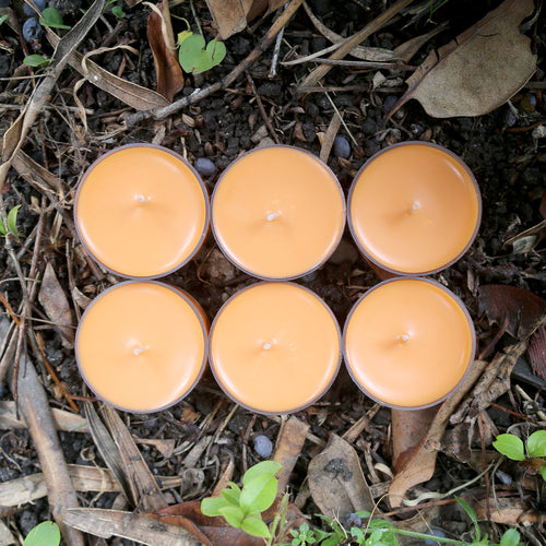 Mythos Candles | Centaur - Oakmoss & Amber | 6 Soy Tealight Pack