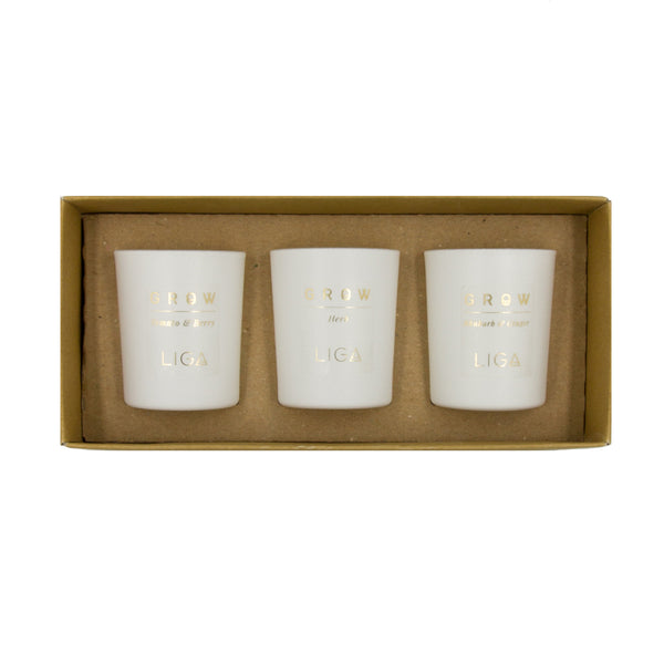 GROW Trio Candle Box including Herb, Rhubarb & Ginger and Tomato & Berry Candles