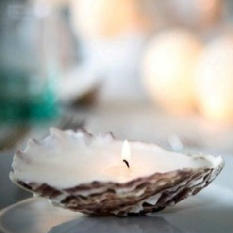 Oyster Candles | Box of 4