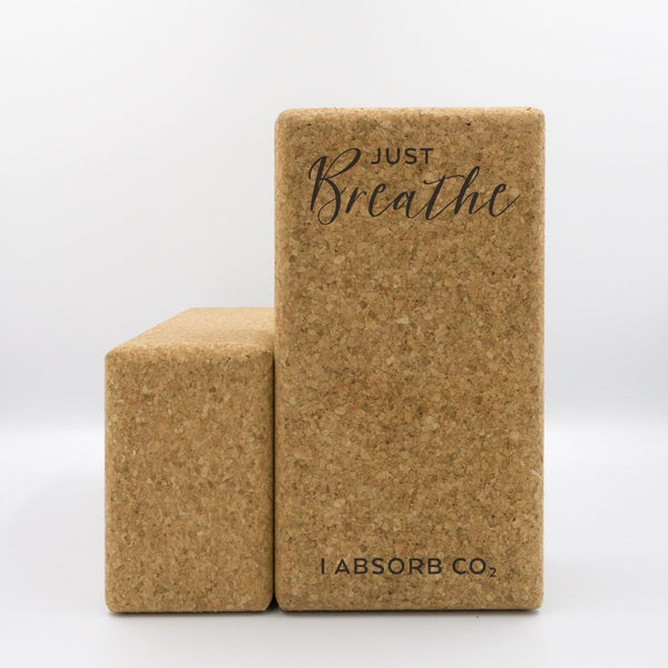 Set of 2 Just Breathe Cork Yoga Blocks