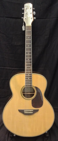 Fairclough Nightingale acoustic with built in tuner