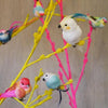 Feather Bird Clips-Home Accessories-Petra Boase-Brassica Mercantile