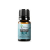 Eucalyptus Radiata Essential Oil | 100% Pure Essential Oil - JOYA ESSENTIALS